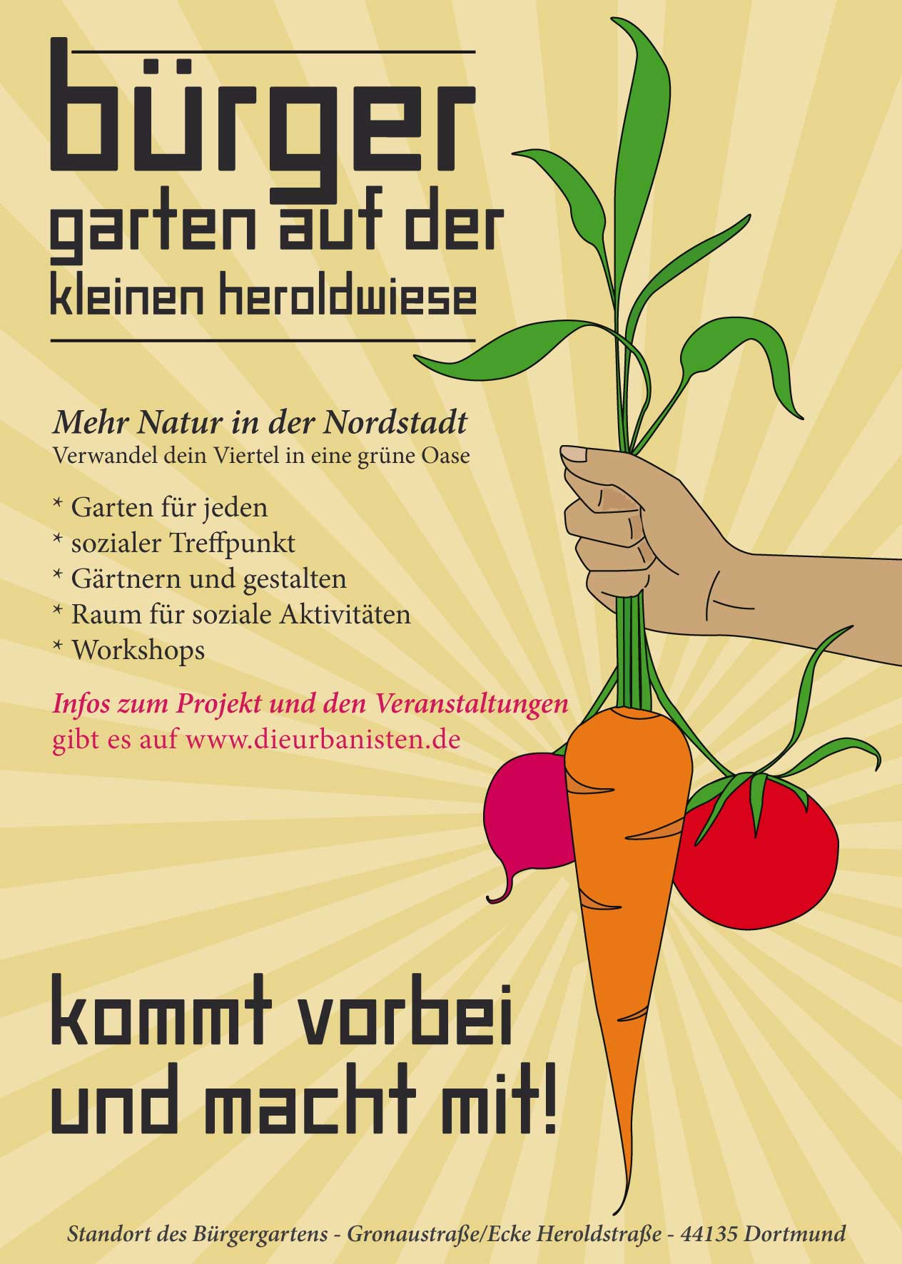Workshops & Picknick der Kulturen