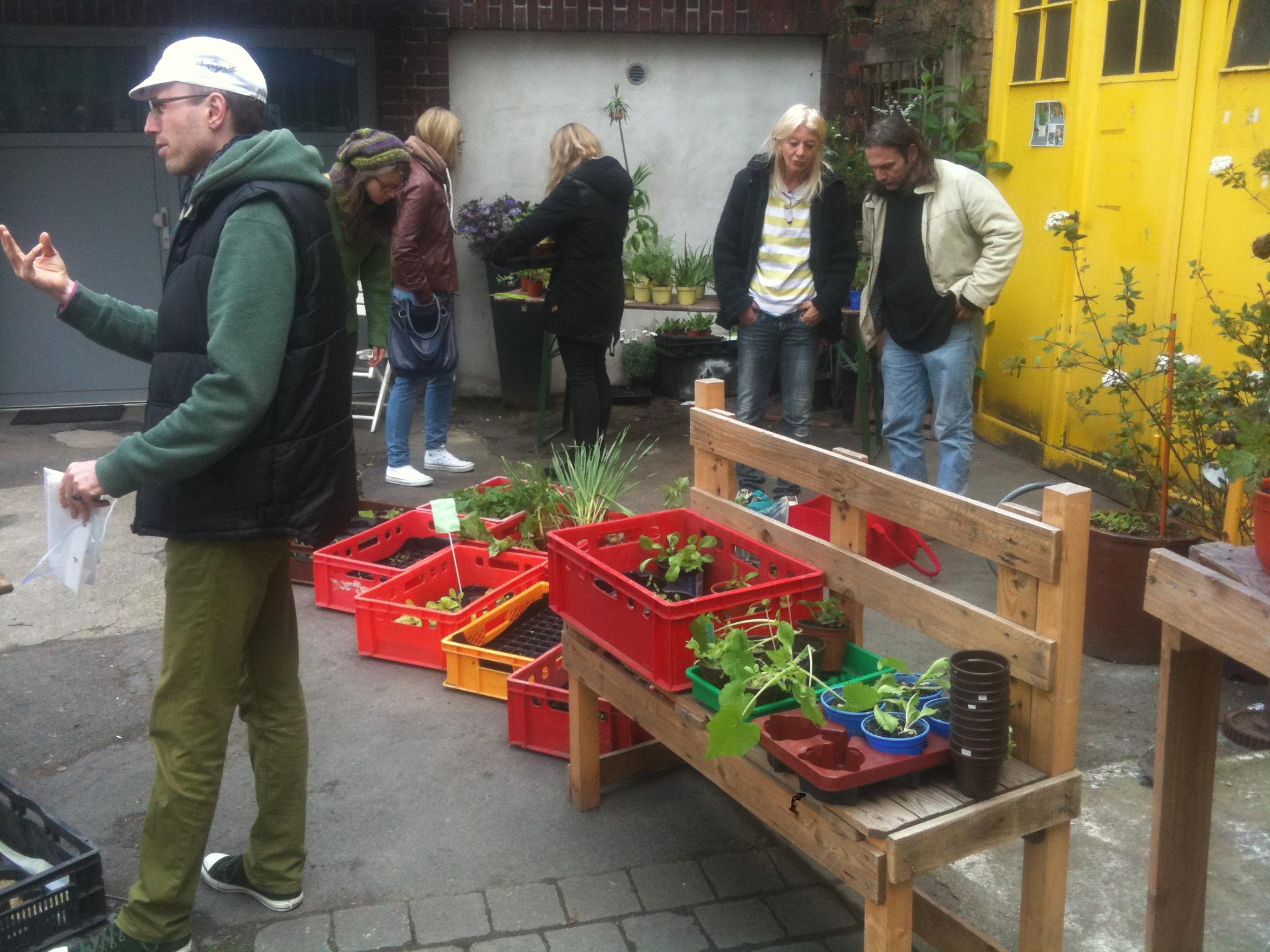 Pflanzentauschbörse auf dem Frühlings-Flohmarkt im UGH