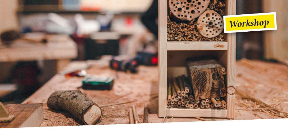 Creative Club lädt ein – Insektenhotels bauen