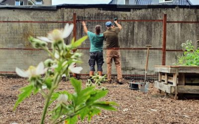 Urbaner Waldgarten in Huckarde wächst weiter