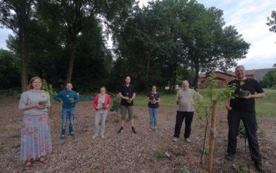 Naturfelder Verein gründet sich um Blühwiesen in Dortmund zu fördern
